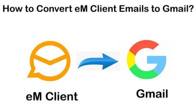 Photo of Convert eM Client to Gmail using Free eM Client Converter